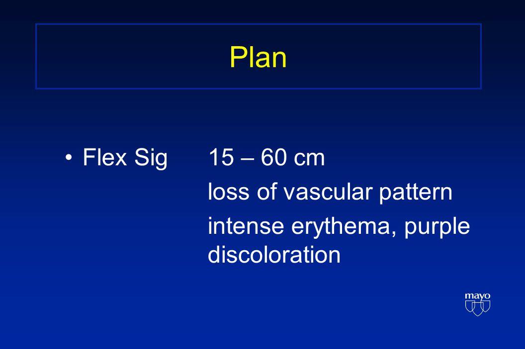 Plan Flex Sig15 – 60 cm loss of vascular pattern intense erythema, purple discoloration