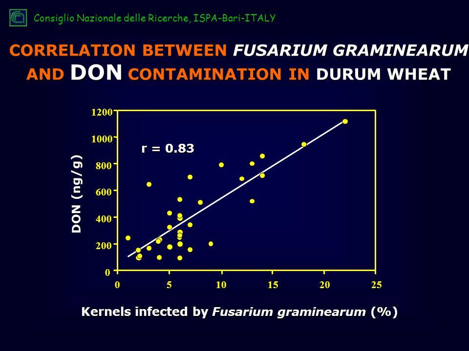 CORRELATION BETWEEN FUSARIUM GRAMINEARUM AND DON CONTAMINATION IN DURUM WHEAT Kernels infected by Fusarium graminearum (%) 0510152025 0 200 400 600 800 10001200 r = 0.83 DON (ng/g) Consiglio Nazionale delle Ricerche, ISPA-Bari-ITALY