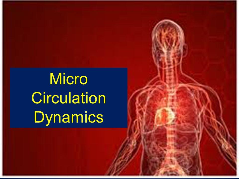Micro Circulation Dynamics