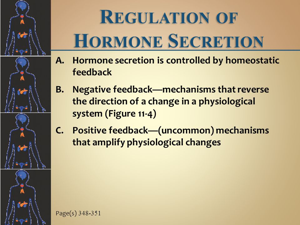 R EGULATION OF H ORMONE S ECRETION A.Hormone secretion is controlled by homeostatic feedback B.Negative feedback—mechanisms that reverse the direction of a change in a physiological system (Figure 11-4) C.Positive feedback—(uncommon) mechanisms that amplify physiological changes Page(s) 348-351