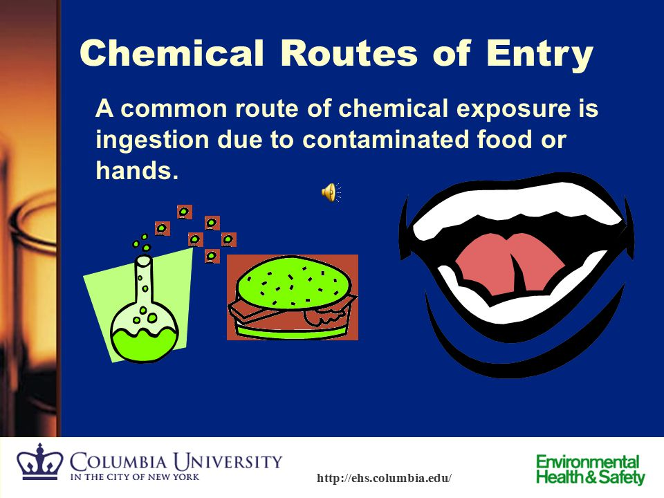 21 http://ehs.columbia.edu/ Exposure Management - Chemical Routes of Entry  Inhalation  Absorption  Injection  Ingestion