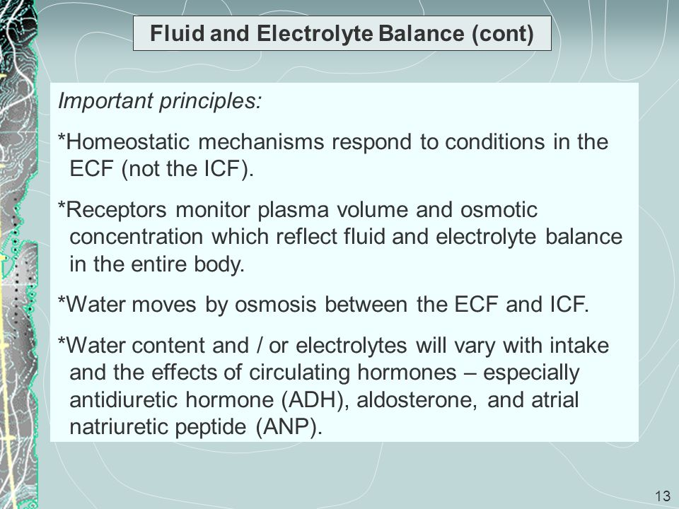 13 Fluid and Electrolyte Balance (cont) Important principles: *Homeostatic mechanisms respond to conditions in the ECF (not the ICF). *Receptors monit