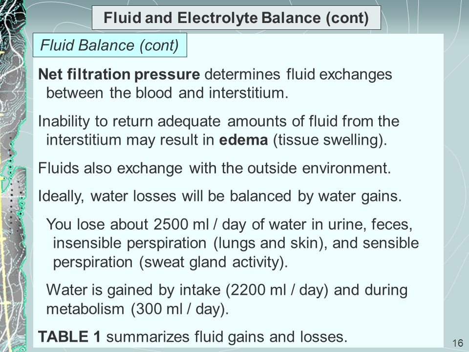 16 Fluid and Electrolyte Balance (cont) Net filtration pressure determines fluid exchanges between the blood and interstitium. Inability to return ade
