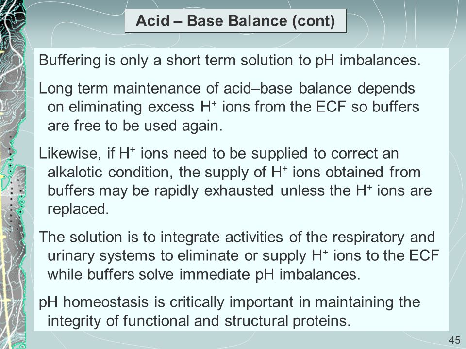 45 Acid – Base Balance (cont) Buffering is only a short term solution to pH imbalances. Long term maintenance of acid–base balance depends on eliminat