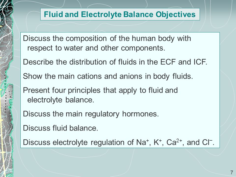 7 Fluid and Electrolyte Balance Objectives Discuss the composition of the human body with respect to water and other components. Describe the distribu