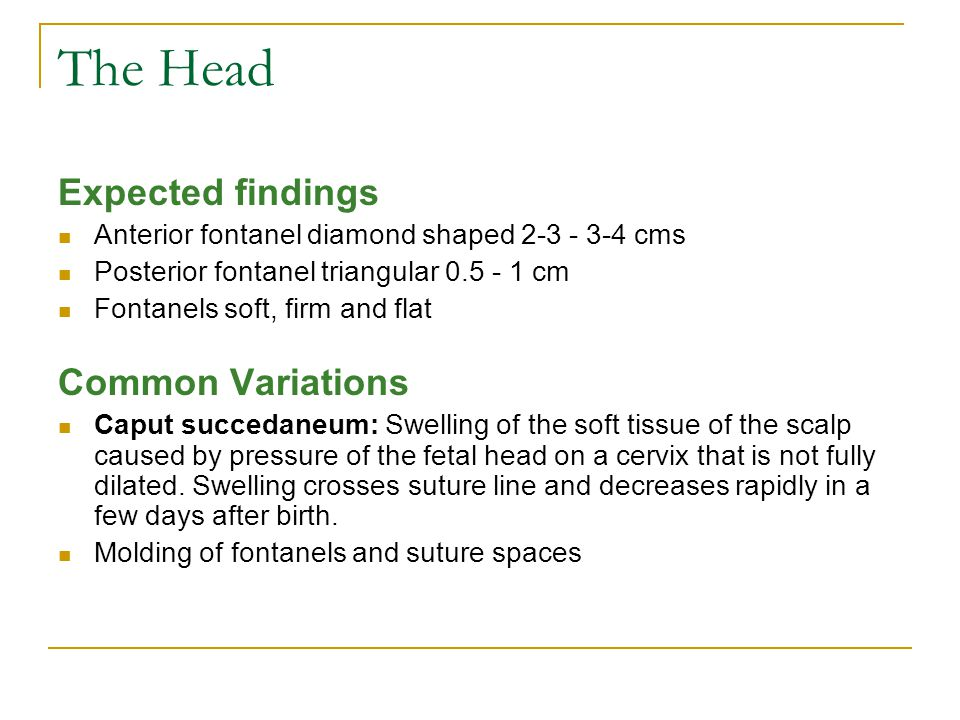 The Head Expected findings Anterior fontanel diamond shaped 2-3 - 3-4 cms Posterior fontanel triangular 0.5 - 1 cm Fontanels soft, firm and flat Commo