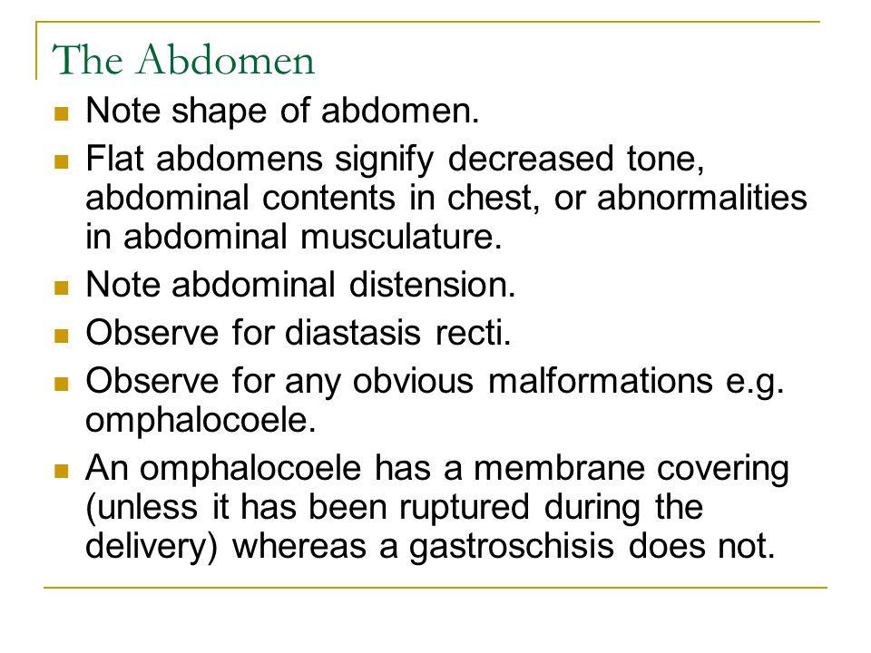 The Abdomen Note shape of abdomen. Flat abdomens signify decreased tone, abdominal contents in chest, or abnormalities in abdominal musculature. Note
