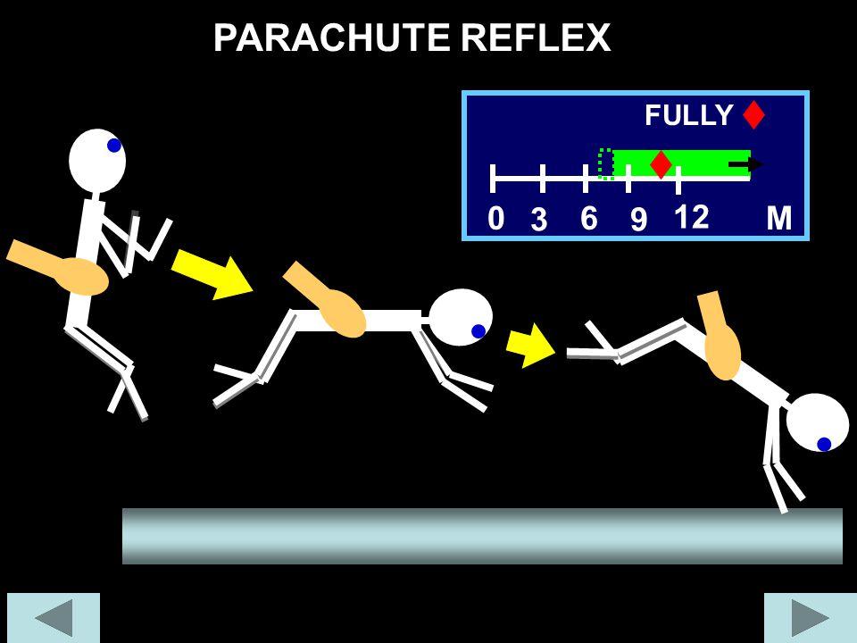 PARACHUTE REFLEX 60M 12 FULLY 39