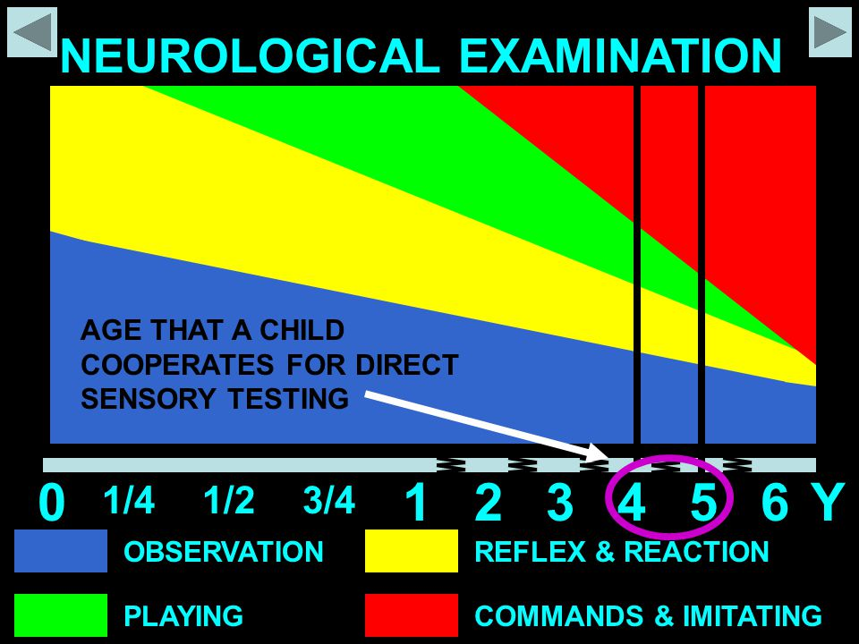 OBSERVATION PLAYING REFLEX & REACTION COMMANDS & IMITATING NEUROLOGICAL EXAMINATION 0 1/41/23/4 12345Y6 AGE THAT A CHILD COOPERATES FOR DIRECT SENSORY