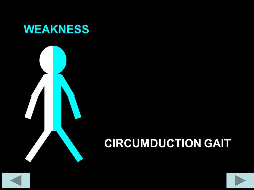 WEAKNESS CIRCUMDUCTION GAIT
