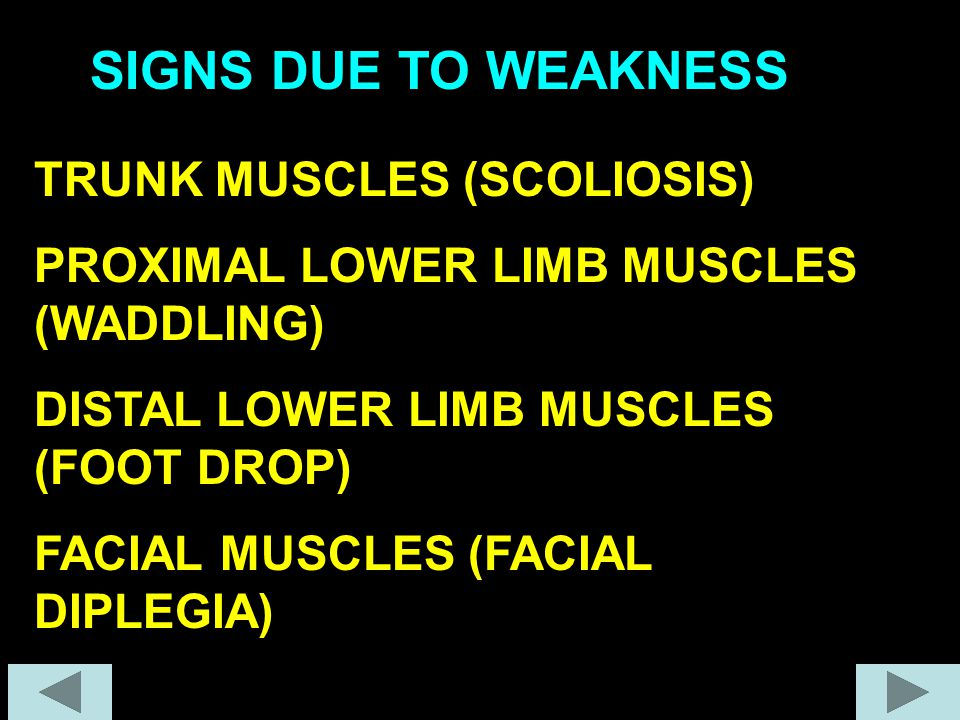 TRUNK MUSCLES (SCOLIOSIS) PROXIMAL LOWER LIMB MUSCLES (WADDLING) DISTAL LOWER LIMB MUSCLES (FOOT DROP) FACIAL MUSCLES (FACIAL DIPLEGIA) SIGNS DUE TO W