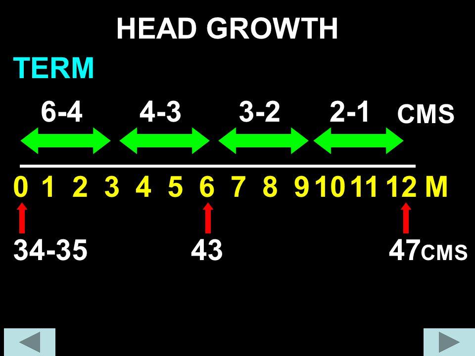 123456789101112M HEAD GROWTH 0 6-44-33-22-1 CMS 34-354347 CMS TERM