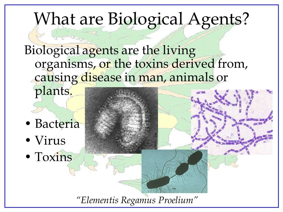 """""""Elementis Regamus Proelium"""" What is Biological Warfare? Warfare involving the use of living organisms (as disease germs) or their toxic products agai"""