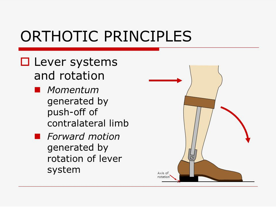 ORTHOTIC PRINCIPLES  Lever systems and rotation Momentum generated by push-off of contralateral limb Forward motion generated by rotation of lever sy