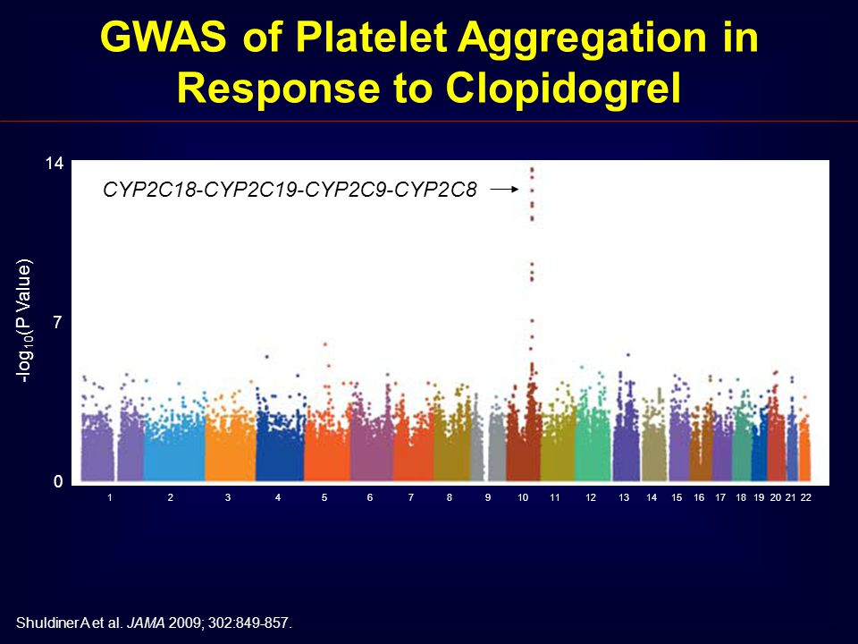 14 0 7 -log 10 (P Value) 123456789101112131415161718192022 21 GWAS of Platelet Aggregation in Response to Clopidogrel Shuldiner A et al. JAMA 2009; 30