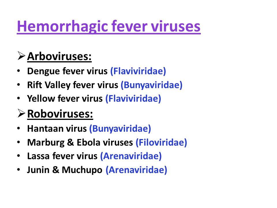Hemorrhagic fever viruses  Arboviruses: Dengue fever virus (Flaviviridae) Rift Valley fever virus (Bunyaviridae) Yellow fever virus (Flaviviridae)  Roboviruses: Hantaan virus (Bunyaviridae) Marburg & Ebola viruses (Filoviridae) Lassa fever virus (Arenaviridae) Junin & Muchupo (Arenaviridae)