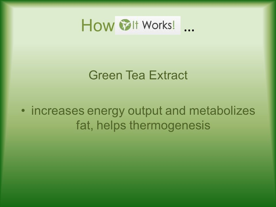 How … Green Tea Extract increases energy output and metabolizes fat, helps thermogenesis