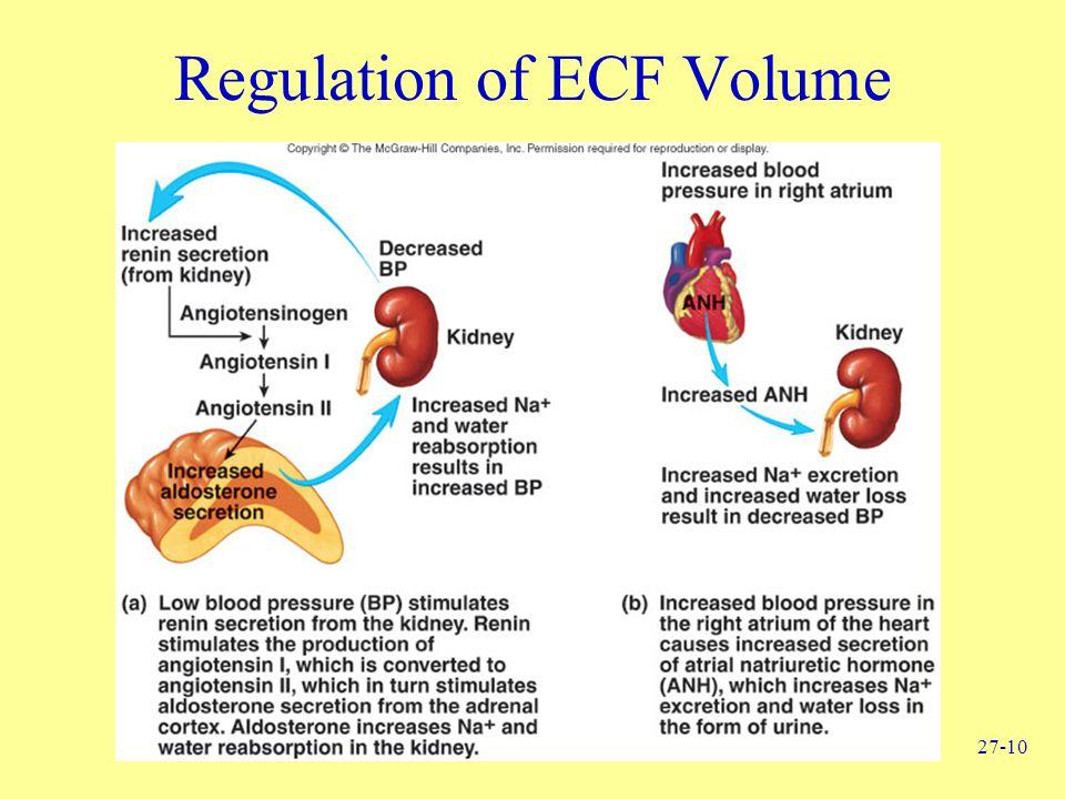 27-10 Regulation of ECF Volume