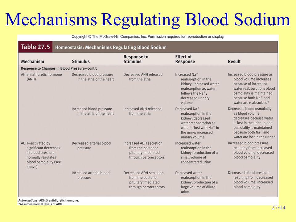 27-14 Mechanisms Regulating Blood Sodium