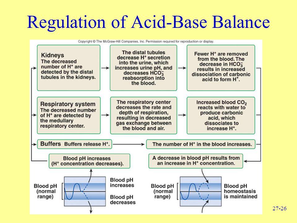 27-26 Regulation of Acid-Base Balance