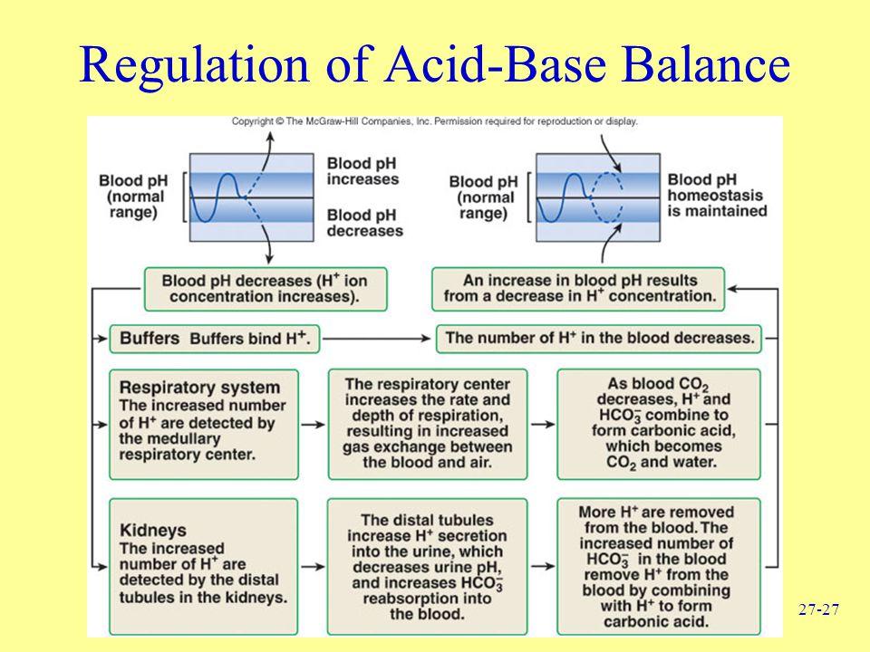 27-27 Regulation of Acid-Base Balance