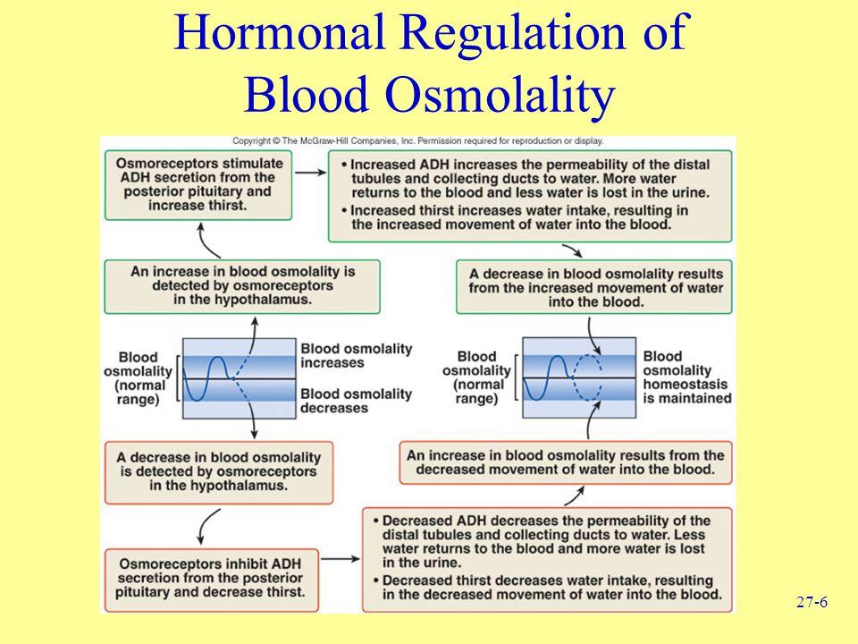 27-6 Hormonal Regulation of Blood Osmolality