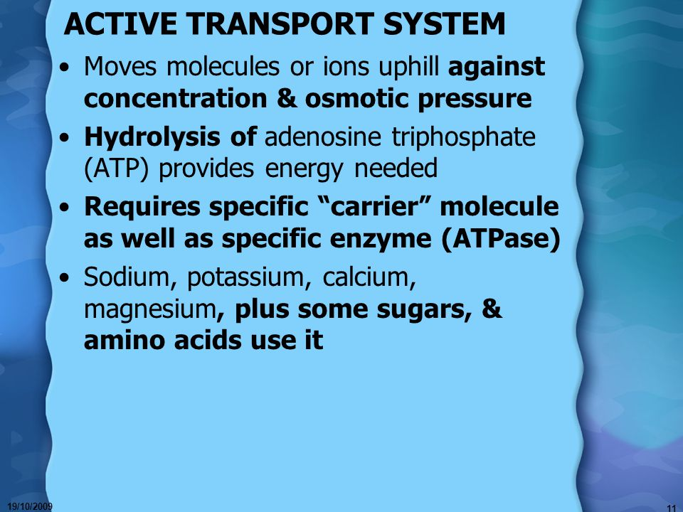 19/10/2009 11 ACTIVE TRANSPORT SYSTEM Moves molecules or ions uphill against concentration & osmotic pressure Hydrolysis of adenosine triphosphate (ATP) provides energy needed Requires specific carrier molecule as well as specific enzyme (ATPase) Sodium, potassium, calcium, magnesium, plus some sugars, & amino acids use it