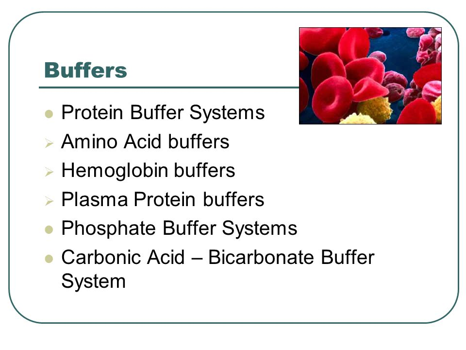 Buffers Protein Buffer Systems  Amino Acid buffers  Hemoglobin buffers  Plasma Protein buffers Phosphate Buffer Systems Carbonic Acid – Bicarbonate Buffer System