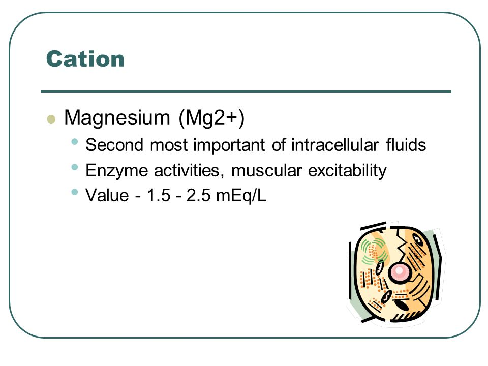 Cation Magnesium (Mg2+) Second most important of intracellular fluids Enzyme activities, muscular excitability Value - 1.5 - 2.5 mEq/L
