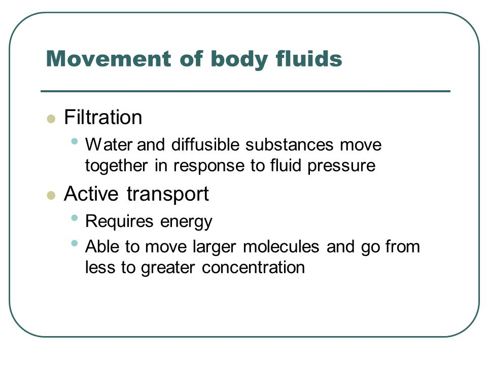 Movement of body fluids Filtration Water and diffusible substances move together in response to fluid pressure Active transport Requires energy Able to move larger molecules and go from less to greater concentration