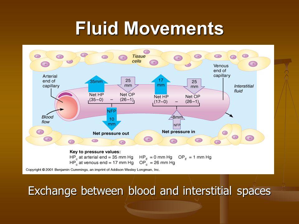 Fluid Movements Exchange between extracellular fluids and cells