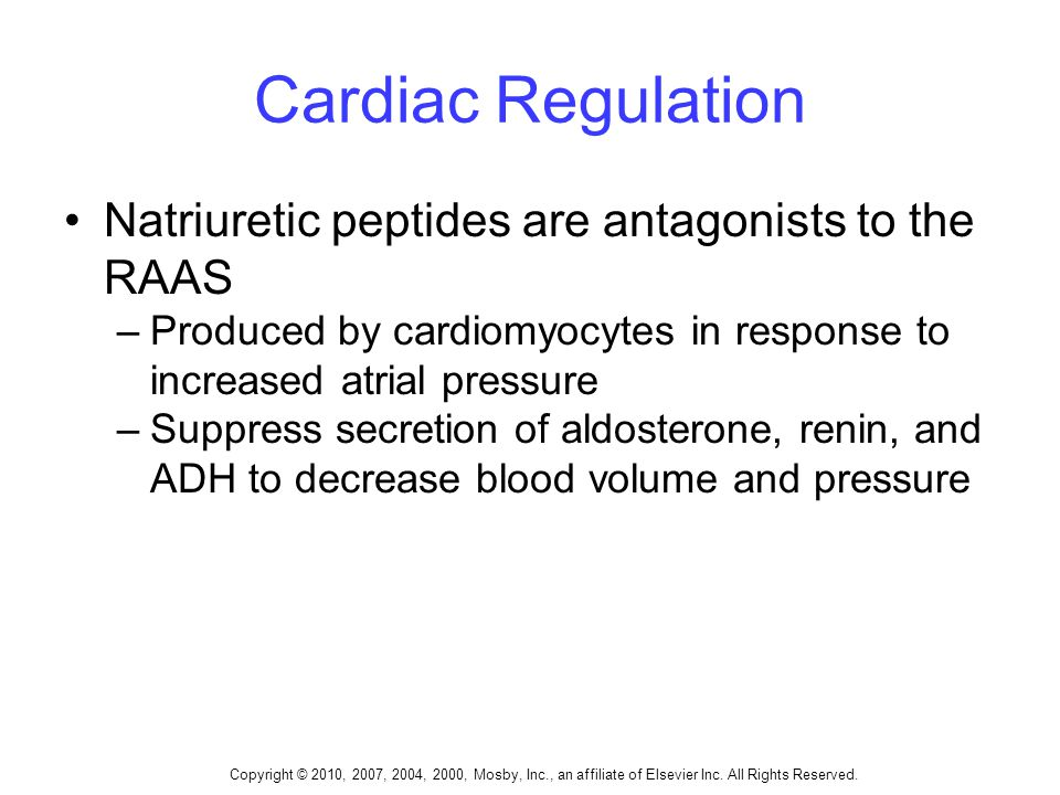 Copyright © 2010, 2007, 2004, 2000, Mosby, Inc., an affiliate of Elsevier Inc. All Rights Reserved. Cardiac Regulation Natriuretic peptides are antago