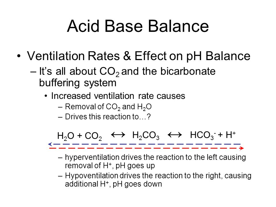 Acid Base Balance Ventilation Rates & Effect on pH Balance –It's all about CO 2 and the bicarbonate buffering system Increased ventilation rate causes