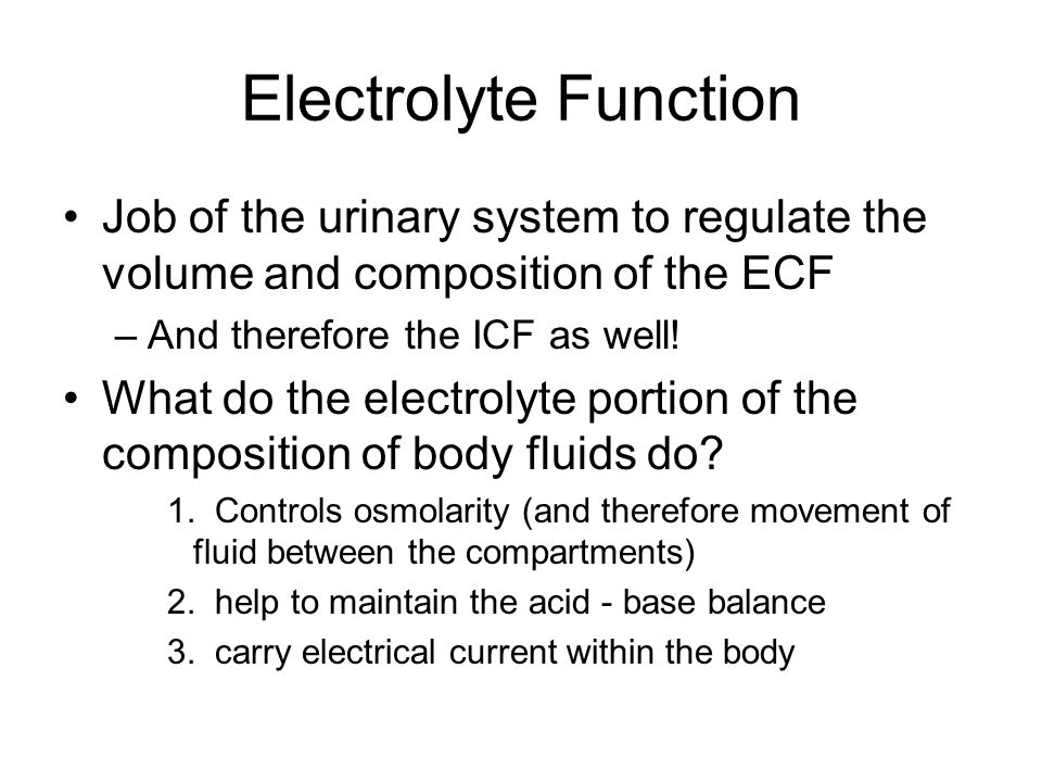 Electrolyte Function Job of the urinary system to regulate the volume and composition of the ECF –And therefore the ICF as well! What do the electroly