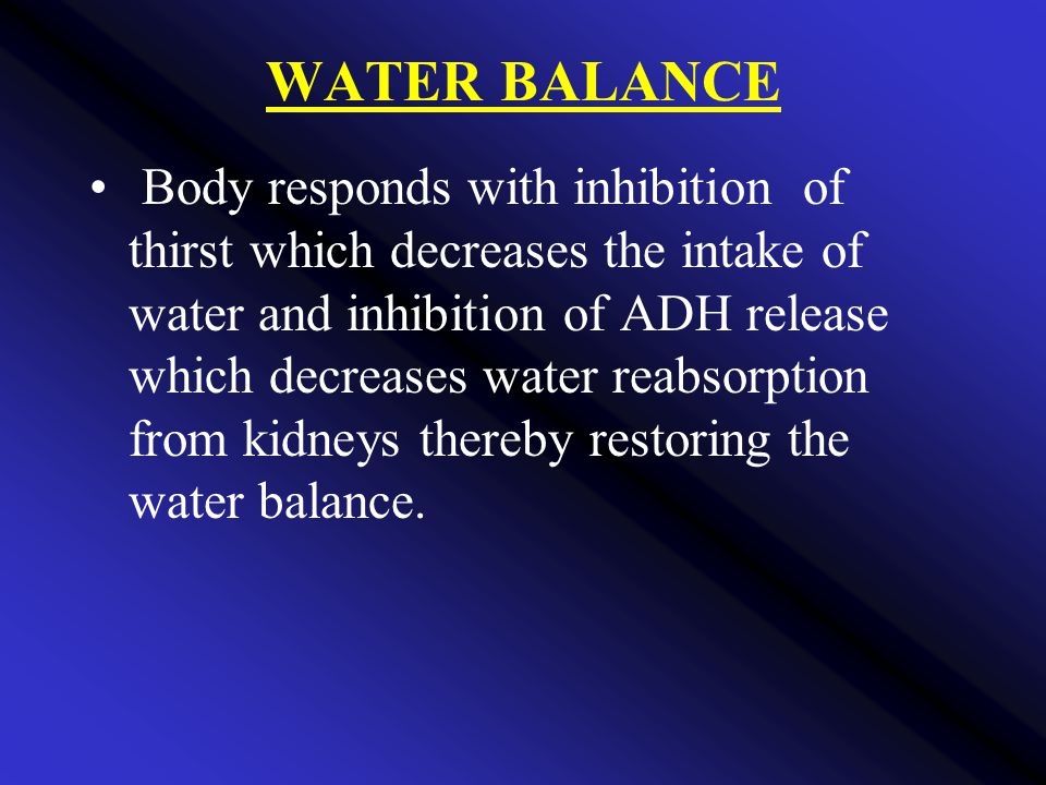 WATER BALANCE Body responds with inhibition of thirst which decreases the intake of water and inhibition of ADH release which decreases water reabsorption from kidneys thereby restoring the water balance.