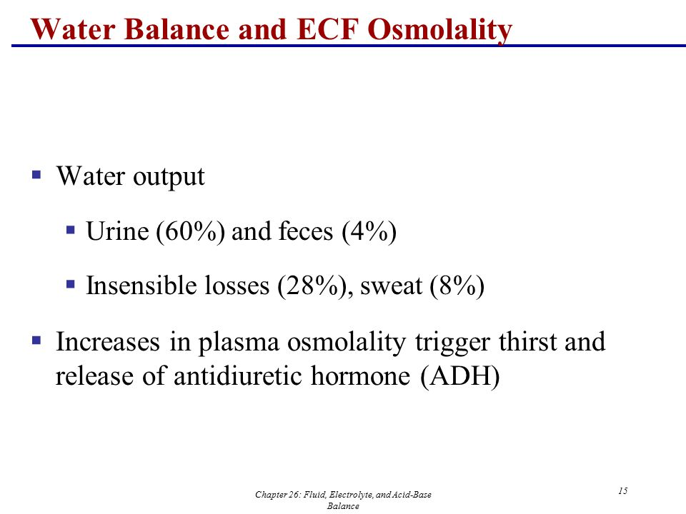 Chapter 26: Fluid, Electrolyte, and Acid-Base Balance 15 Water Balance and ECF Osmolality  Water output  Urine (60%) and feces (4%)  Insensible los
