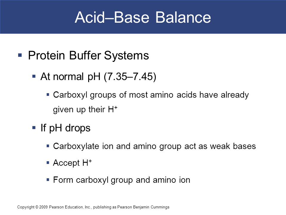 Copyright © 2009 Pearson Education, Inc., publishing as Pearson Benjamin Cummings Acid–Base Balance  Protein Buffer Systems  At normal pH (7.35–7.45