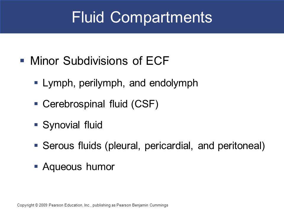 Copyright © 2009 Pearson Education, Inc., publishing as Pearson Benjamin Cummings Fluid Compartments  Minor Subdivisions of ECF  Lymph, perilymph, a