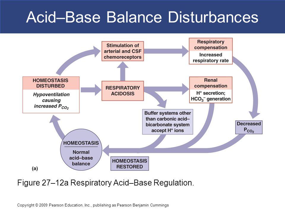 Copyright © 2009 Pearson Education, Inc., publishing as Pearson Benjamin Cummings Acid–Base Balance Disturbances Figure 27–12a Respiratory Acid–Base R