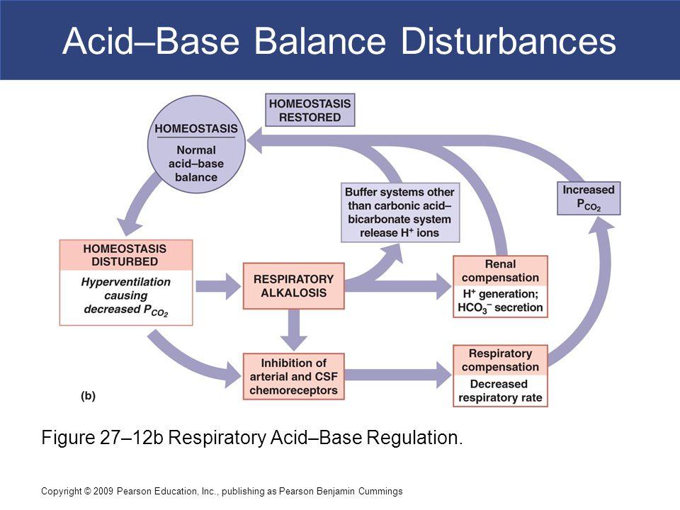 Copyright © 2009 Pearson Education, Inc., publishing as Pearson Benjamin Cummings Acid–Base Balance Disturbances Figure 27–12b Respiratory Acid–Base R