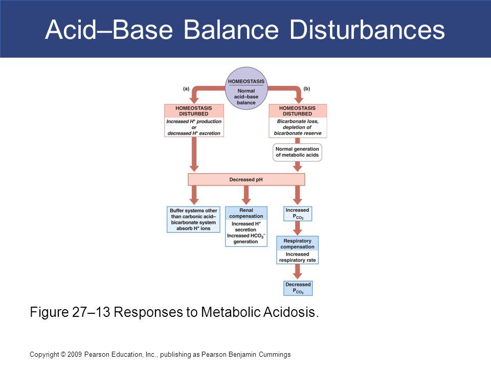 Copyright © 2009 Pearson Education, Inc., publishing as Pearson Benjamin Cummings Acid–Base Balance Disturbances Figure 27–13 Responses to Metabolic A