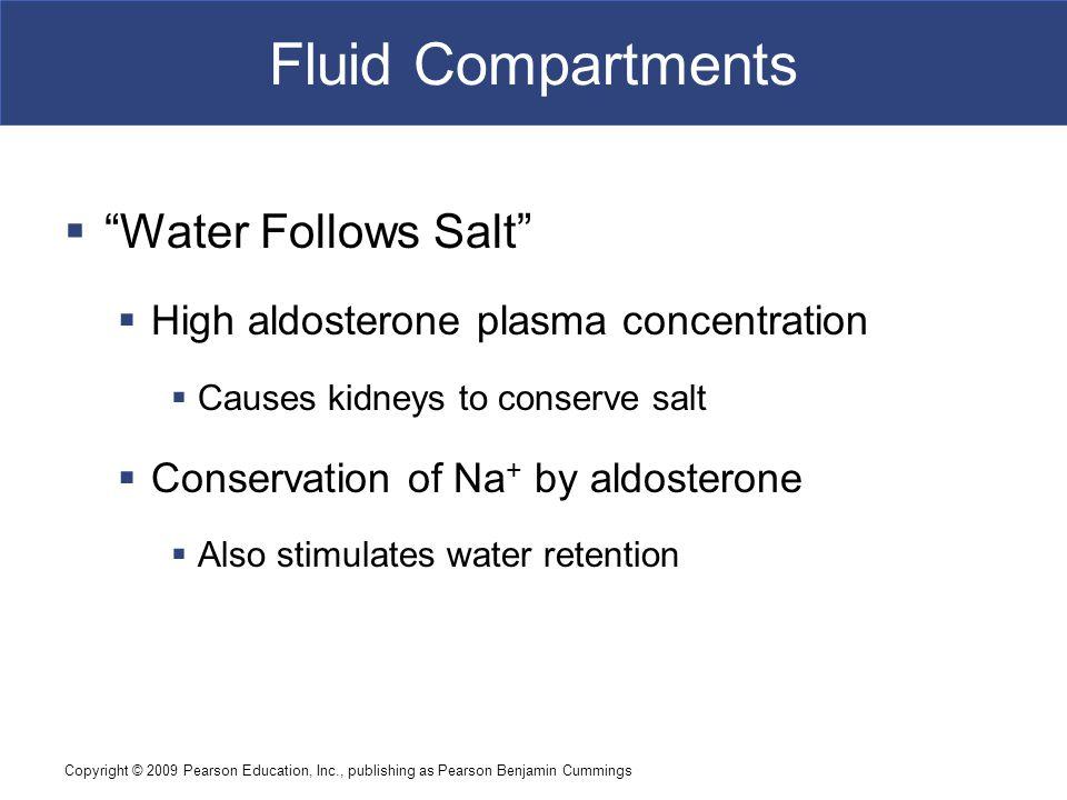 "Copyright © 2009 Pearson Education, Inc., publishing as Pearson Benjamin Cummings Fluid Compartments  ""Water Follows Salt""  High aldosterone plasma"