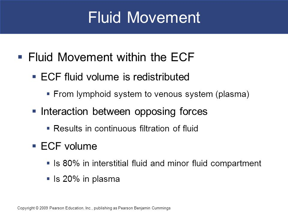 Copyright © 2009 Pearson Education, Inc., publishing as Pearson Benjamin Cummings Fluid Movement  Fluid Movement within the ECF  ECF fluid volume is