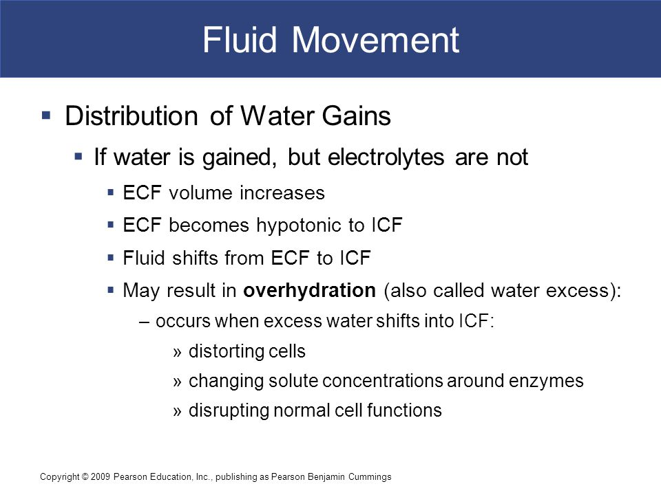 Copyright © 2009 Pearson Education, Inc., publishing as Pearson Benjamin Cummings Fluid Movement  Distribution of Water Gains  If water is gained, b