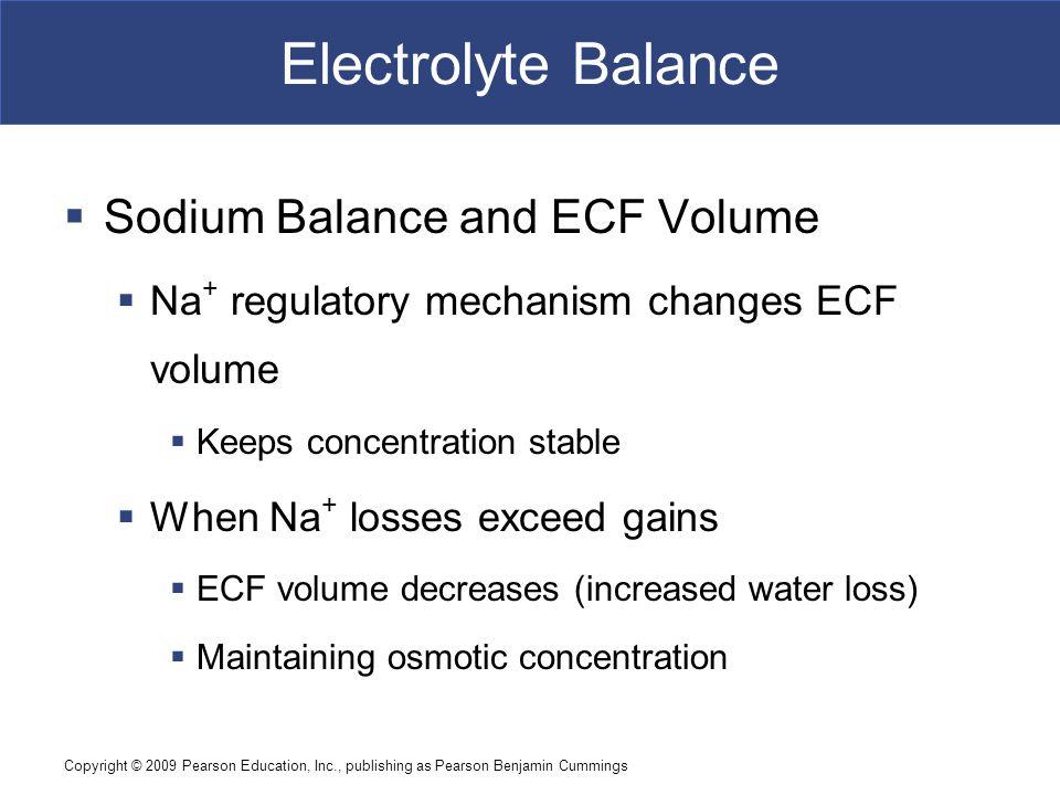 Copyright © 2009 Pearson Education, Inc., publishing as Pearson Benjamin Cummings Electrolyte Balance  Sodium Balance and ECF Volume  Na + regulator
