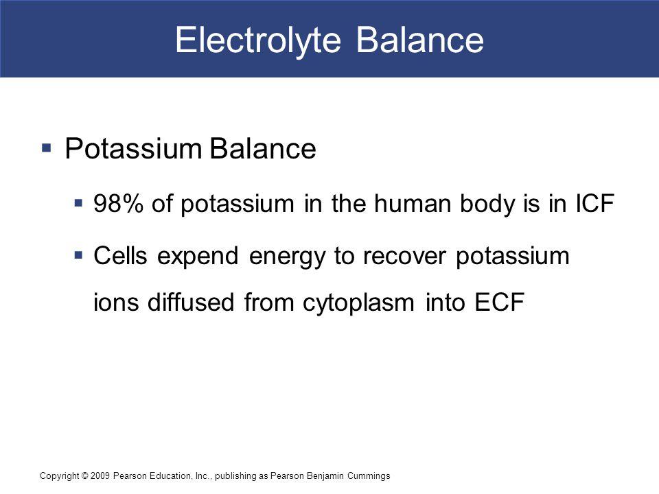 Copyright © 2009 Pearson Education, Inc., publishing as Pearson Benjamin Cummings Electrolyte Balance  Potassium Balance  98% of potassium in the hu