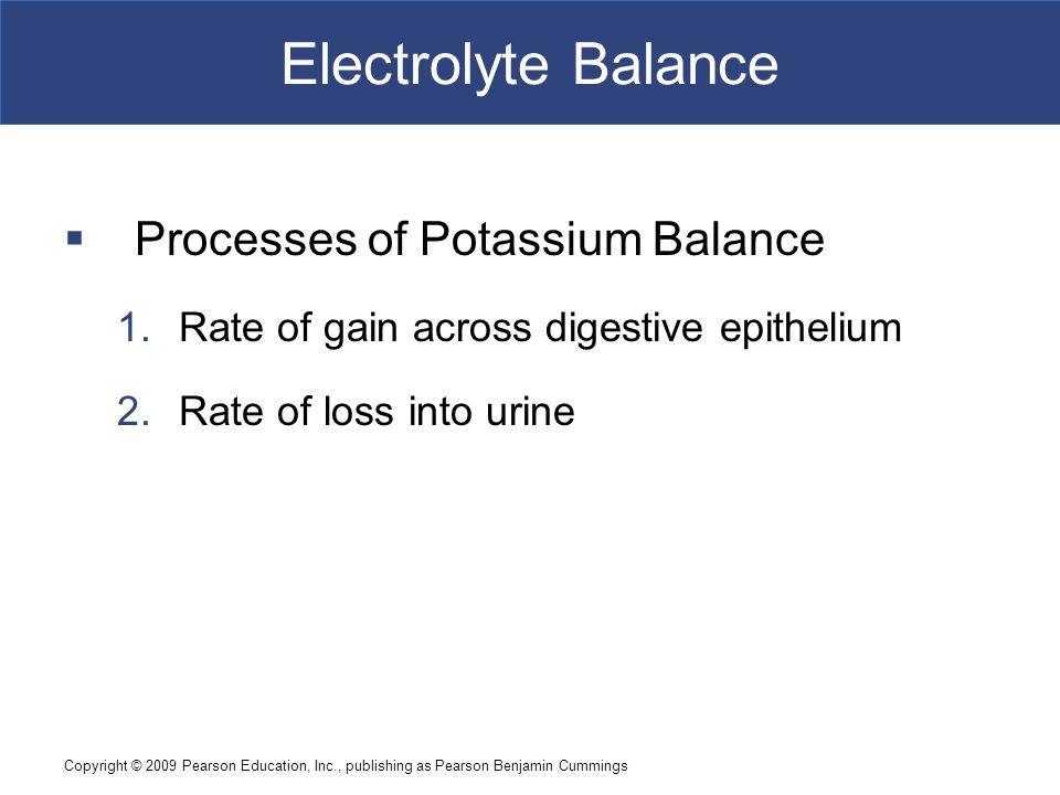 Copyright © 2009 Pearson Education, Inc., publishing as Pearson Benjamin Cummings Electrolyte Balance  Processes of Potassium Balance 1.Rate of gain