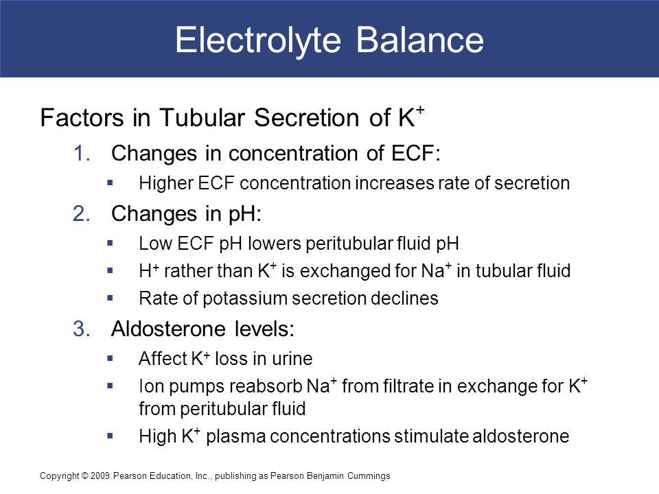 Copyright © 2009 Pearson Education, Inc., publishing as Pearson Benjamin Cummings Electrolyte Balance Factors in Tubular Secretion of K + 1.Changes in