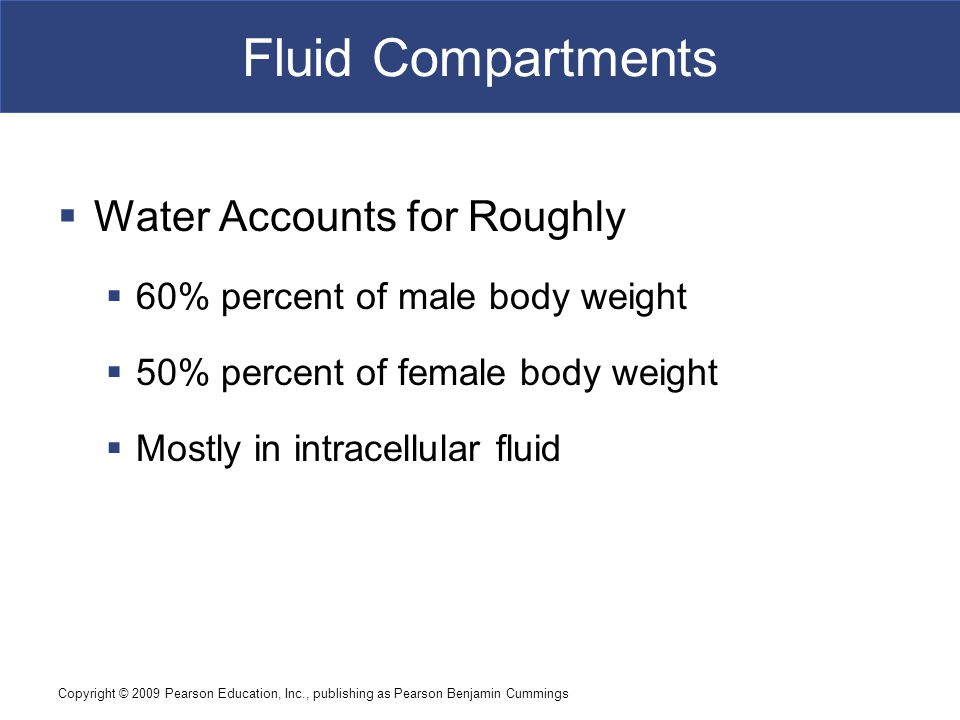 Copyright © 2009 Pearson Education, Inc., publishing as Pearson Benjamin Cummings Fluid Compartments  Water Accounts for Roughly  60% percent of mal