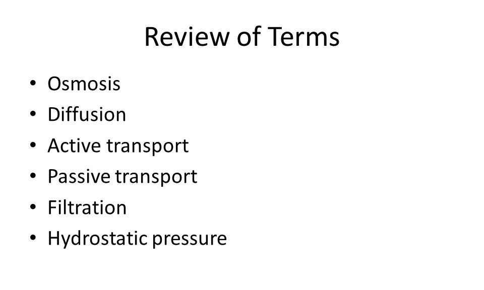 Review of Terms Osmosis Diffusion Active transport Passive transport Filtration Hydrostatic pressure